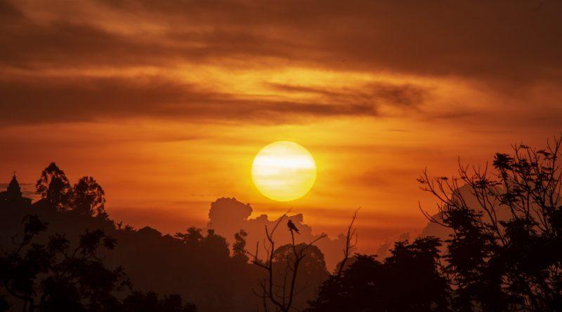 Eine Reise nach Uganda